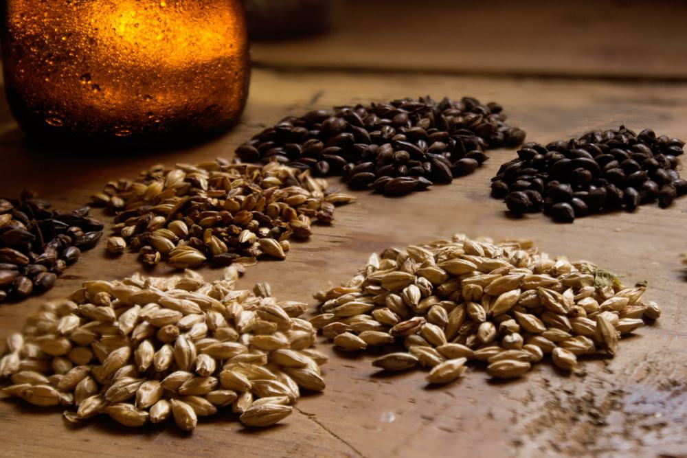 Grains For Brewing Beer